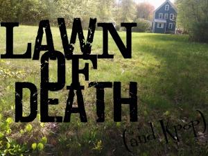 lawn of death2